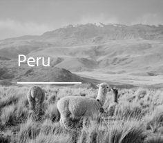 peru-cb
