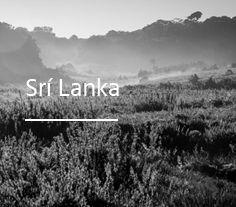 srilanka-cb